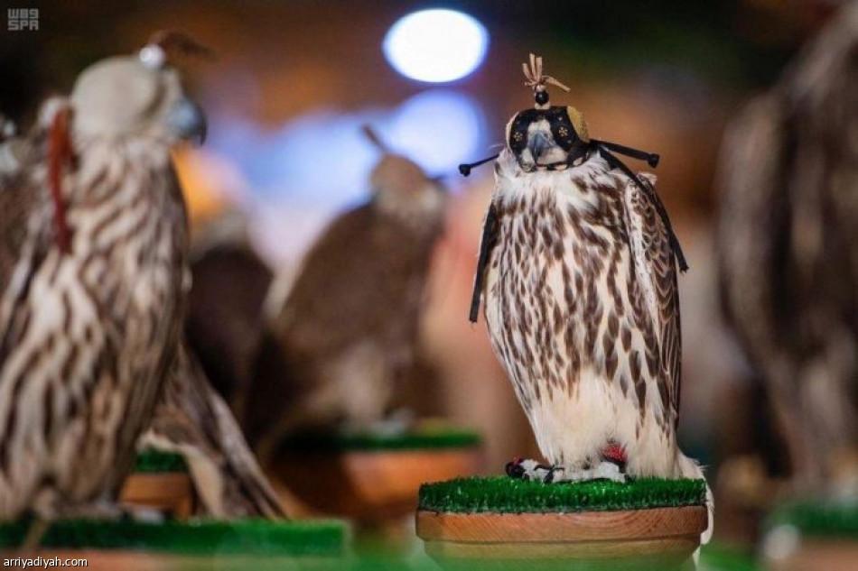 معرض الصقور ينطلق الجمعة في موسم الرياض | صحيفة الرياضية